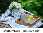summer breakfast in beautiful... | Shutterstock . vector #1018525135