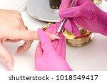 manicure. master make nail... | Shutterstock . vector #1018549417