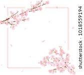 cherry blossom vector frame. | Shutterstock .eps vector #1018559194