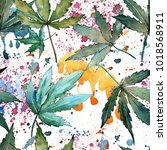cannabis leaves pattern in a... | Shutterstock . vector #1018568911