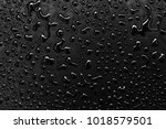 abstract water drops on a white ... | Shutterstock . vector #1018579501