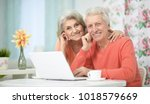 happy senior couple with laptop | Shutterstock . vector #1018579669