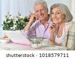 portrait of happy beautiful... | Shutterstock . vector #1018579711