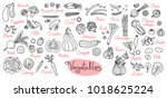 set drawings of vegetables for... | Shutterstock .eps vector #1018625224
