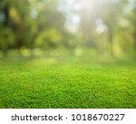 green grass background | Shutterstock . vector #1018670227