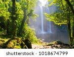 jungle path to misol ha... | Shutterstock . vector #1018674799