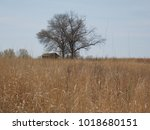 Small photo of Shaw Prairie House