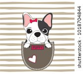 cute dog in the pocket  french... | Shutterstock .eps vector #1018704844