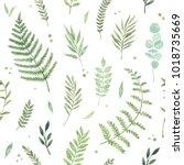 vector watercolor seamless... | Shutterstock .eps vector #1018735669