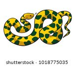 snake crawling in thick... | Shutterstock .eps vector #1018775035