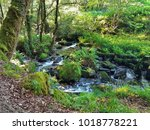 a water stream in the mountain... | Shutterstock . vector #1018778221