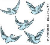 illustration of flying doves in ... | Shutterstock .eps vector #1018791754
