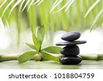 wellness environment with stack ... | Shutterstock . vector #1018804759