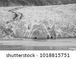 sawyer glacier in tracy arm... | Shutterstock . vector #1018815751