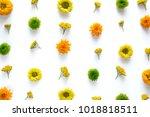 spring arrangement with... | Shutterstock . vector #1018818511