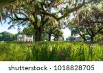ruins of a plantation in the... | Shutterstock . vector #1018828705