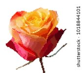 red  orange  pik rose in the... | Shutterstock .eps vector #1018844101