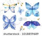 set of watercolor butterfly.... | Shutterstock . vector #1018859689
