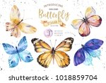 set of watercolor butterfly.... | Shutterstock . vector #1018859704