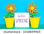 colorful plasticine flowers in...   Shutterstock . vector #1018859965