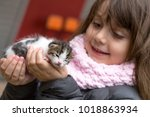 Stock photo little girl in the hands of the child kitten baby a cat 1018863934