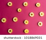 directly above view of yellow... | Shutterstock . vector #1018869031