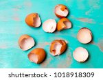 Top View Of Egg Shells On...