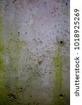 Small photo of The vertical texture of old industrial concrete wall with rude green spots