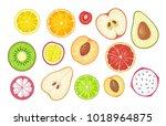 set slice fruits. vector color...   Shutterstock .eps vector #1018964875