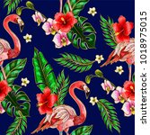 seamless pattern with flamingo  ...   Shutterstock .eps vector #1018975015