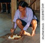 Small photo of Ecuador Amazon, December 30, 2017: Local Quechua Ecuadorian indigenous woman crushes a type of manioc, yucca, in a traditional method