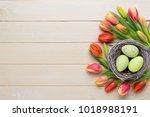 spring easter tulips in bucket...   Shutterstock . vector #1018988191