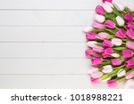 pink tulip on the white...   Shutterstock . vector #1018988221