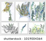 a set of drawings of color...   Shutterstock . vector #1019004364