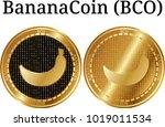 set of physical golden coin...   Shutterstock .eps vector #1019011534