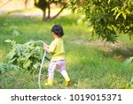 asian kid watering plant and... | Shutterstock . vector #1019015371