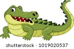 cartoon crocodile isolated on... | Shutterstock .eps vector #1019020537