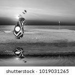 golf equipment   golf bag ... | Shutterstock . vector #1019031265
