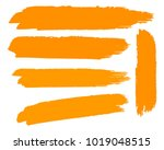 collection of hand drawn golden ... | Shutterstock .eps vector #1019048515