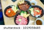 japanese food   una don ikura... | Shutterstock . vector #1019058685