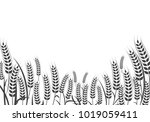 agriculture wheat background... | Shutterstock .eps vector #1019059411