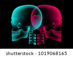 skull couple x ray with heart... | Shutterstock .eps vector #1019068165