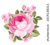 the blooming rose with couple... | Shutterstock .eps vector #1019138311