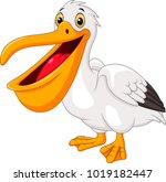 Cartoon Pelican Isolated On...