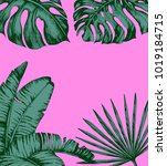 tropical palm leaves on pink... | Shutterstock .eps vector #1019184715