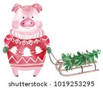 watercolor pig in sweater with... | Shutterstock . vector #1019253295