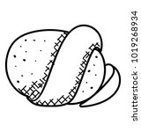 potato with peel hand drawn... | Shutterstock .eps vector #1019268934