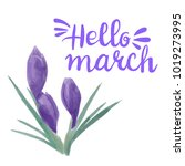 spring watercolor violet... | Shutterstock .eps vector #1019273995