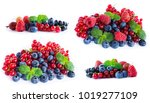set of fresh fruits and berries.... | Shutterstock . vector #1019277109