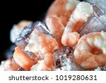 Macro of uncooked frozen tiger prawns in powdered ice with ice cubes. Concept image for seafood designs and proper, safe food storage and preparation. - stock photo